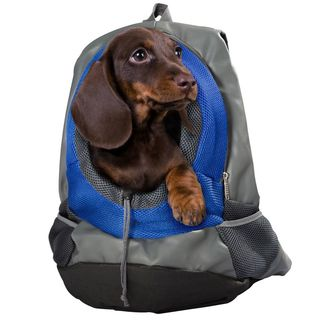 Backpack for Small Dogs